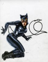 Catwoman 2010 Sketchbook Cover by RichardCox