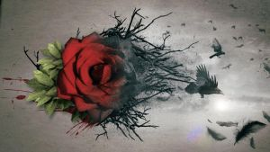 Emotional Abstract Manip project by meka241