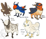 Birdeer Designs by CloverCoin