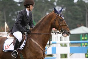 Chesnut Warmblood Show Jumping at Pebble Beach by HorseStockPhotos