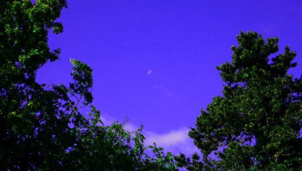 The Moon at day by GhoztRider
