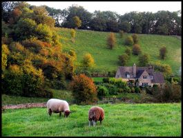 A Cotswold Autumn by parallel-pam