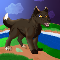 Pebblestar Nightclan Toran by lolpeaceoutlol