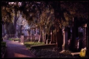 Places I love... Old Cemetery by Castle-Of-Forever