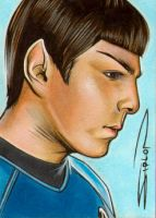 Zachary Quinto Spock by RandySiplon