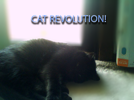 Join the cat revolution! by dragonwithgames