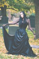 Vampire Stock by Vinobia