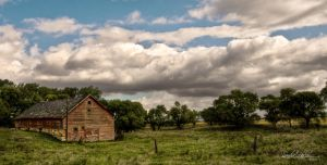 Out To Pasture by Handie