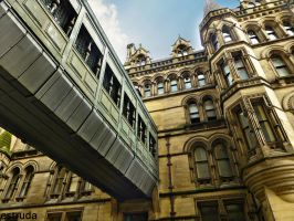 Part Of Manchester Town Hall by Estruda
