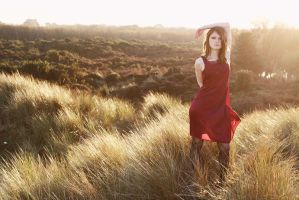 Fox Hunt Vintage by xessencex