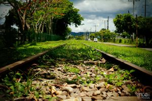 Rail Road to Los Banos by vhive