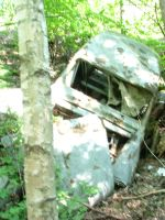 An Old Car in the Forest by Monarth