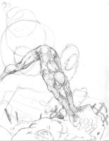 And the SpiderMan prelim. by neilchenier