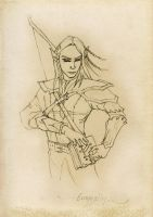 Mirkwood Elf - Lord of the Rings by skyehopper