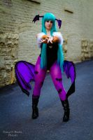 Morrigan 3 by Lily-in-Leather