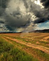 storm south Richfield UT Hay by houstonryan