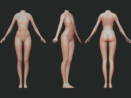 Female body (wip 2) by SFalkon