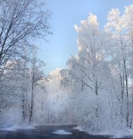 winter in Finland II by KariLiimatainen