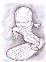 Silver Surfer by bam217