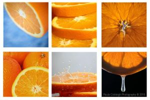 Orange Collage by La-Vita-a-Bella