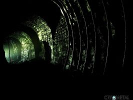 Old tunel 1 by Cryometal