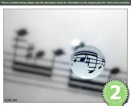 Music 2nd Place by macrophoto