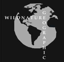 Wildnature Geographic by Sketching-Sketches
