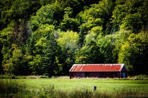 Rusted Roof by steverankin