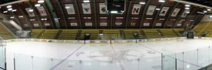 Catamounts Rink by TeaPuck