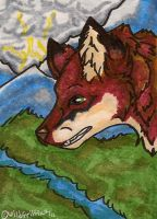 Homba ACEO by WildGriffin