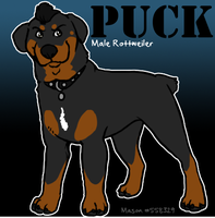 Glee Dogs :: Puck by srspibble