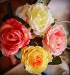 Colorful Roses by Zilfana-9