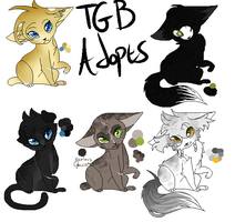 TGB Adopts by Gio-Nii
