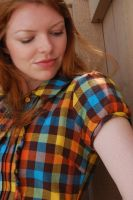 Plaid Dress Stock 13 by chamberstock