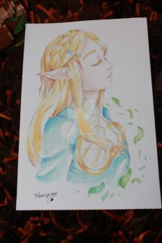 Zelda from the new game by BlackNightStar