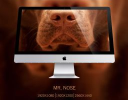 Mr. Nose by Peleber