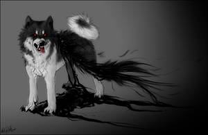 .:Akita Inu..Dark Soul:. by WhiteSpiritWolf