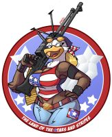 The Stars and Stripes by Jaehthebird