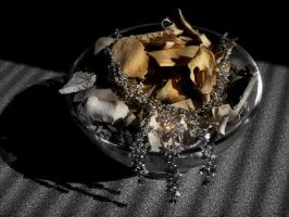 Necklace shoot . by velar1