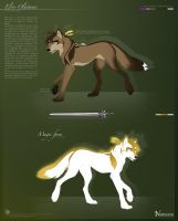 .: Character sheet Elros :. by Seppyo