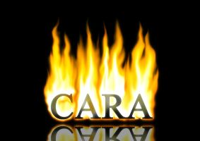 Cara on Fire by melay