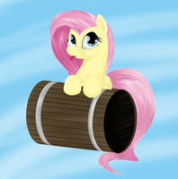 Flutterbarrel by CiscoQL