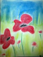 Coquelicot by Morgane-Aidy