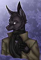Sovy - Winter Bust Commish by kcravenyote