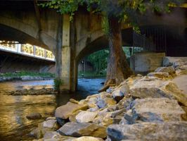 Riverbank by thedens