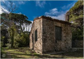 Tatoi 2015 00006a by etsap