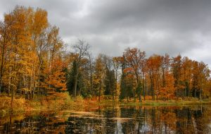 Autumn view... _17_ by my-shots