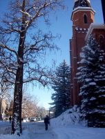 Old Main and a Tree by MissingHorcrux