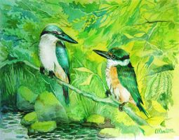 kingfishers father and son by ArkadiyK
