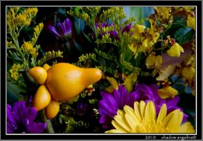 Mardi Gras colors in Asia by drowningwoman